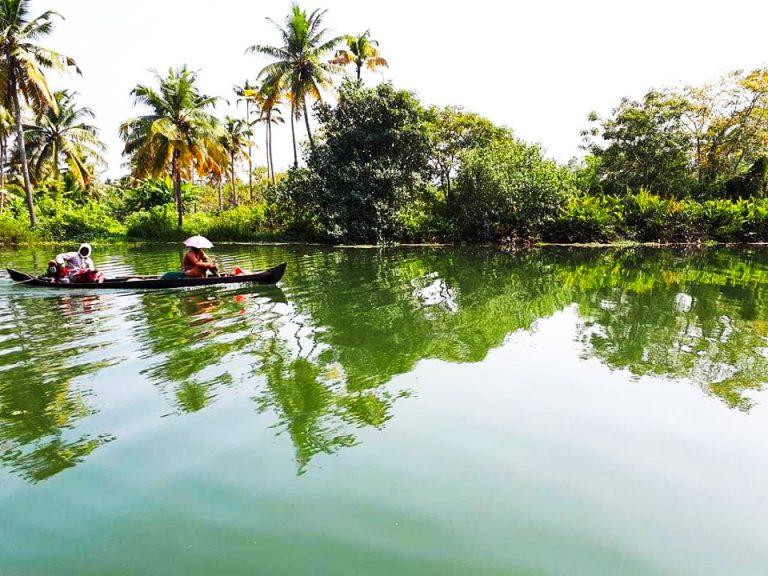 Une mangrove d'inde avec un navire de pêcheurs.